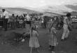 masasda1967
