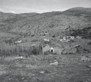 banias1967001