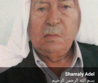 shamaly-1-194x300